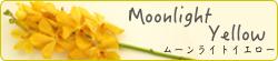 banner_moonlightyellow