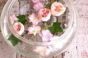 イチゴダイフクとバラ 水盤3