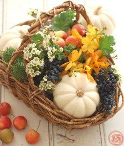 サイアムと白かぼちゃバスケットアレンジ1
