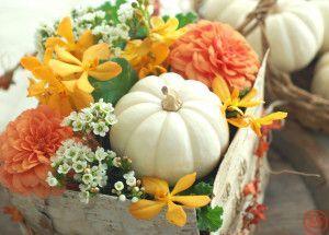 サイアムと白かぼちゃboxアレンジ2